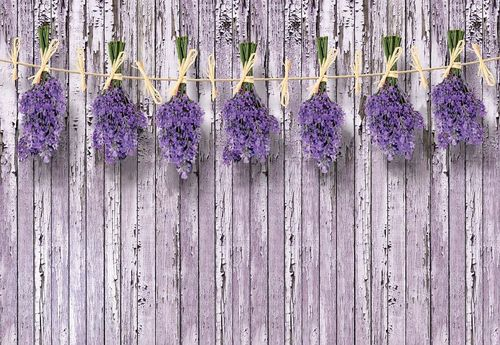 Lavender Bunches On Purple Painted Wood Plank Wall Vintage Style Photo Wallpaper Wall Mural