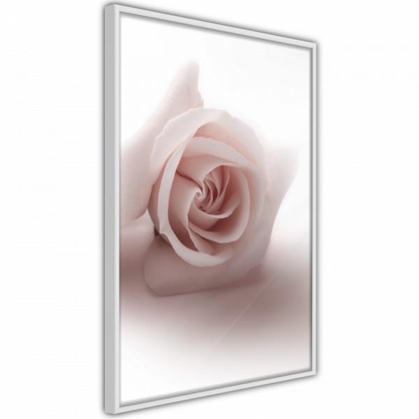 Poster - Subtle Flower