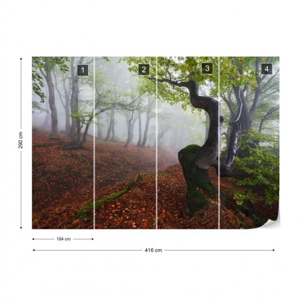 Fangorn Forest Photo Wallpaper Mural