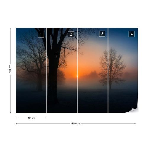 Foggy Sunrise Photo Wallpaper Mural