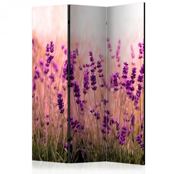 Paravan - Lavender in the Rain [Room Dividers]