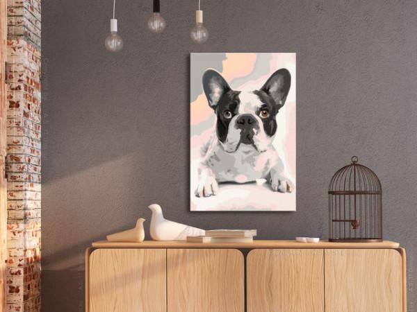 Pictatul pentru recreere - French Bulldog