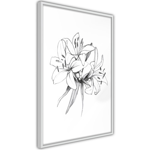 Poster - Sketch of Lillies