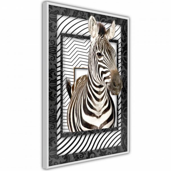 Poster - Zebra in the Frame