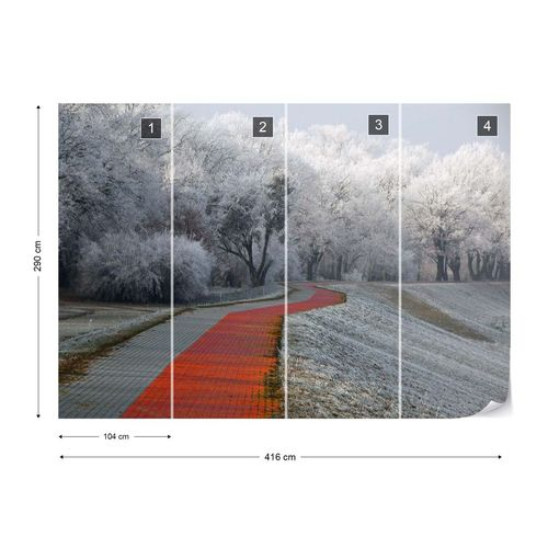 Winter Afternoon Photo Wallpaper Mural