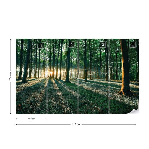 Forest Landscape Green Light Photo Wallpaper Wall Mural