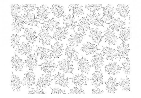 Fototapet - Rotating leaves