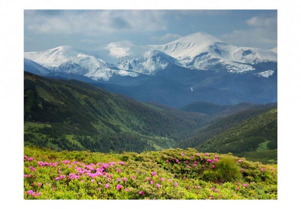 Fototapet - Spring mountain landscape