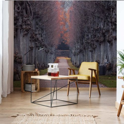 Nothing Gold Can Stay Photo Wallpaper Mural