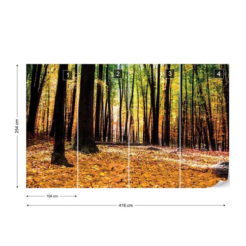 Orange Autumn Forest Photo Wallpaper Wall Mural