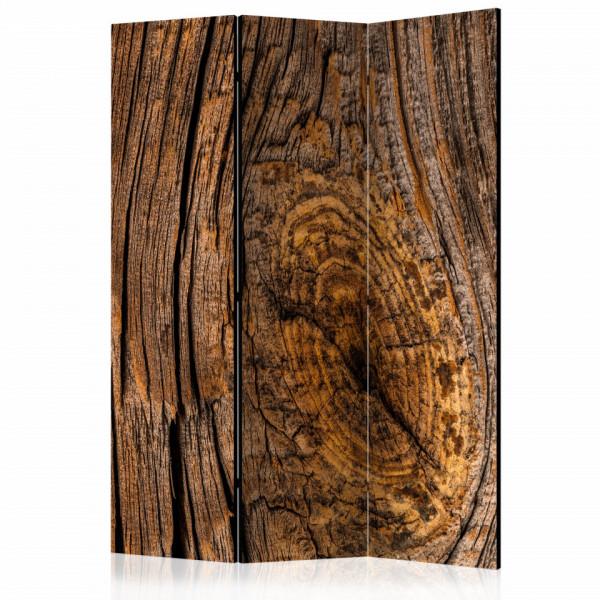 Paravan - Old Tree [Room Dividers]