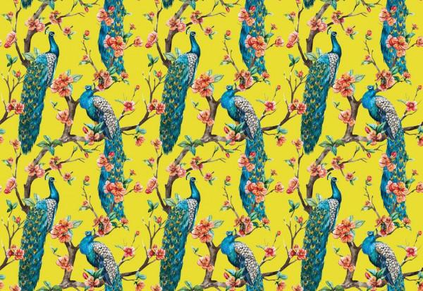 Vintage Peacock Pattern Yellow Photo Wallpaper Wall Mural