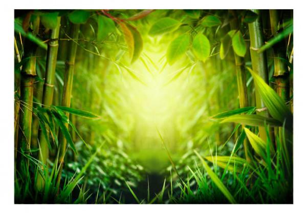 Fototapet - Forest fairy