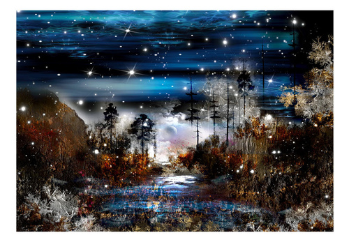 Fototapet - Night in the forest