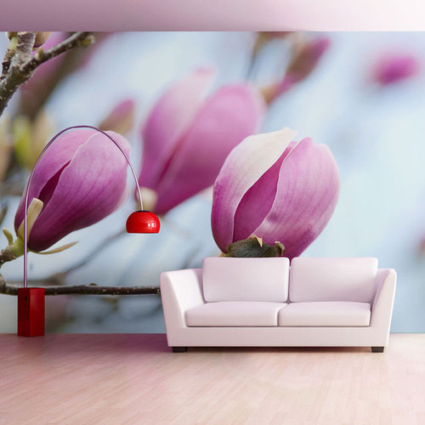Fototapet - spring - magnolia