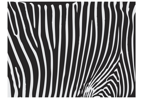 Poze Fototapet - Zebra pattern (black and white)