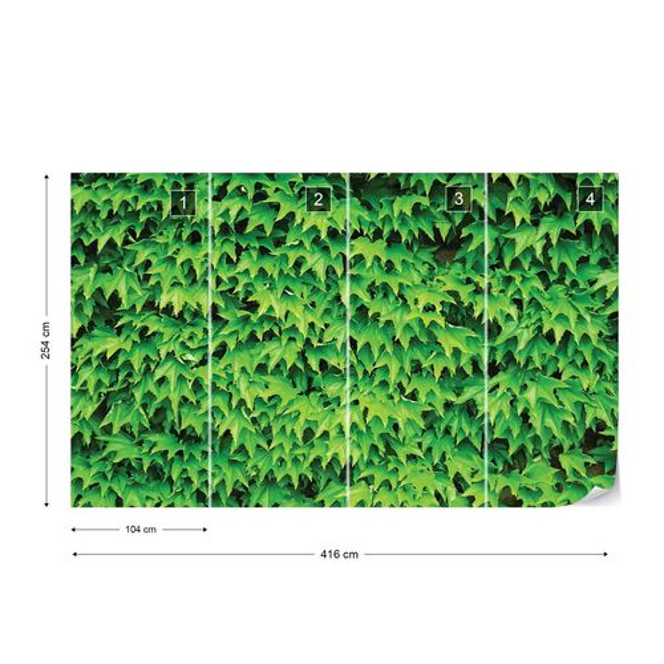 Green Leaf Wall Photo Wallpaper Wall Mural