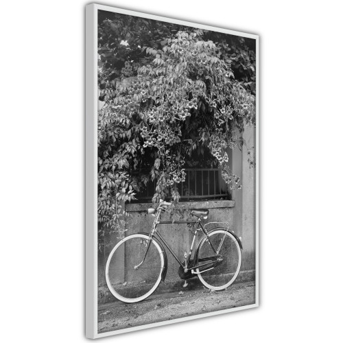 Poster - Bicycle with White Tires