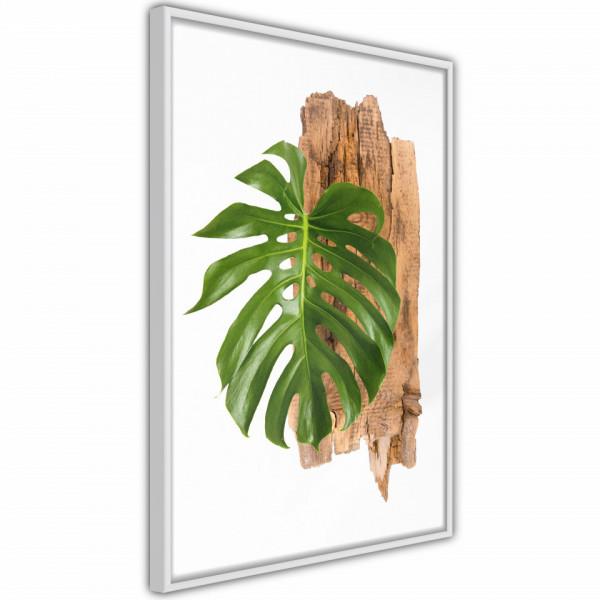 Poster - Leafy Etude
