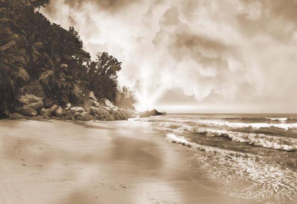 Sepia Tropical Beach Photo Wallpaper Wall Mural