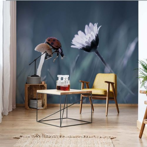 The Story Of The Lady Bug Photo Wallpaper Mural