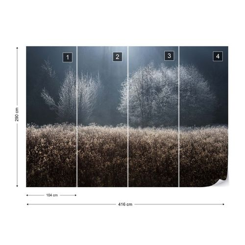 Winter Field Photo Wallpaper Mural