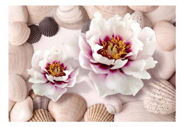 Fototapet - Flowers and Shells