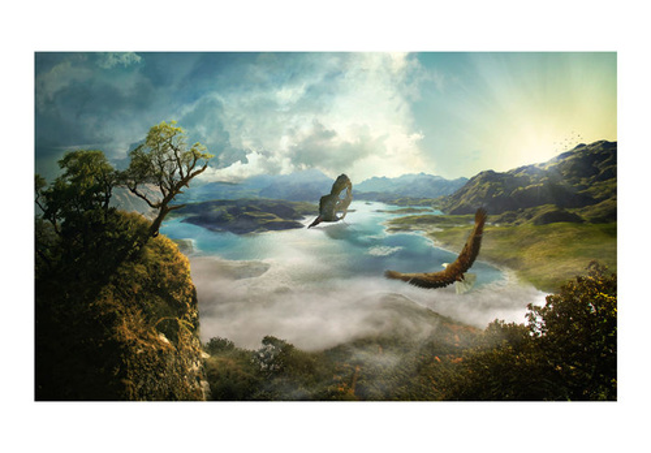 Fototapet - The flight over the lake