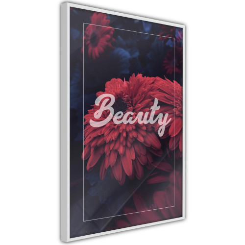Poster - Beauty of the Flowers