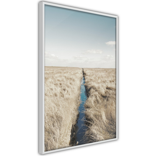 Poster - Drainage Ditch