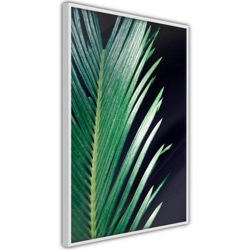 Poster - Soothing Green