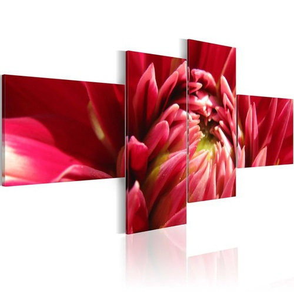 Tablou - A dahlia flower in bloom