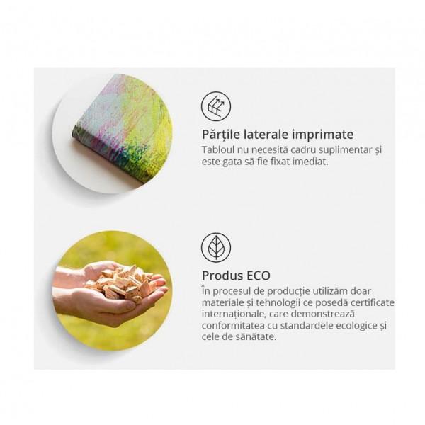 Tablou - Texture and magnolia