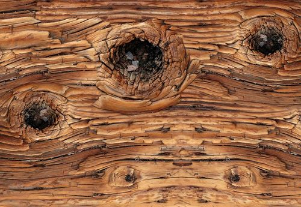 Wood Texture Photo Wallpaper Wall Mural