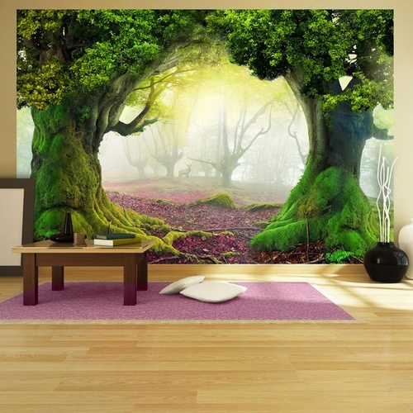 Fototapet - Enchanted forest