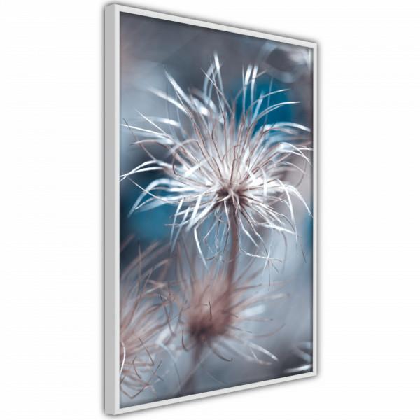 Poster - Like a Dandelion