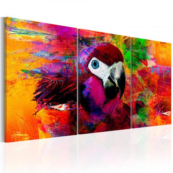 Tablou - Jungle of Colours