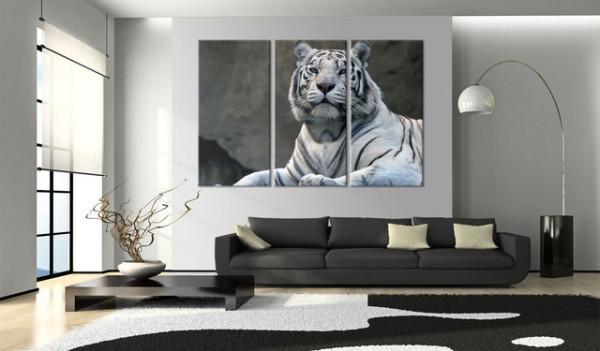 Tablou - White tiger