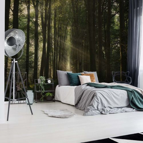 The Essential Photo Wallpaper Mural