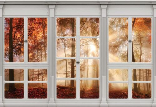 3D Door View Autumn Forest Photo Wallpaper Wall Mural