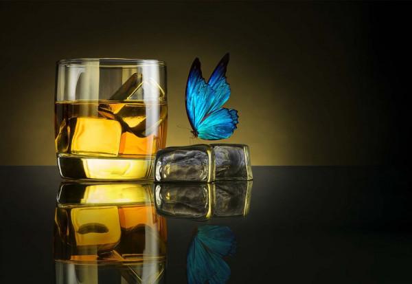 Butterfly Drink Photo Wallpaper Mural