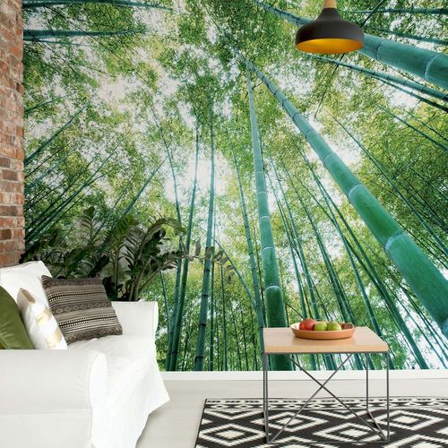 Forest Woods Photo Wallpaper Wall Mural