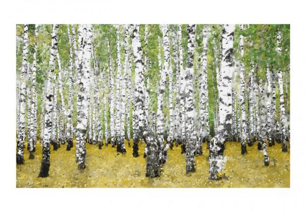 Fototapet - In birch grove...