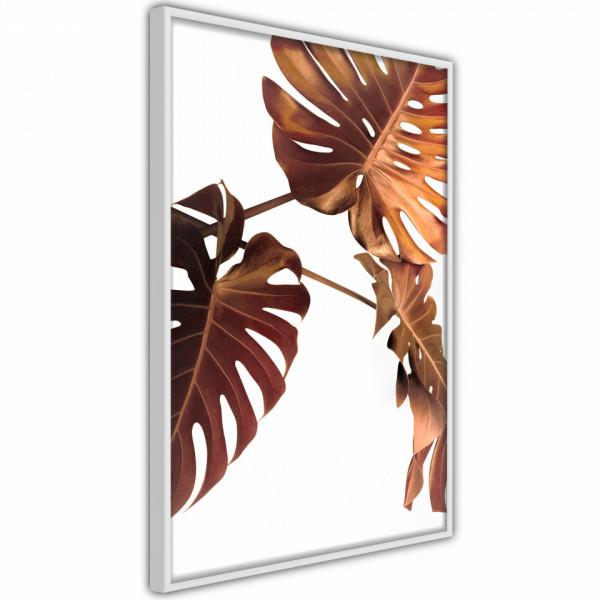 Poster - Copper Monstera