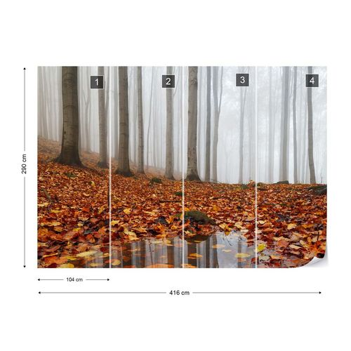 Puddle Photo Wallpaper Mural