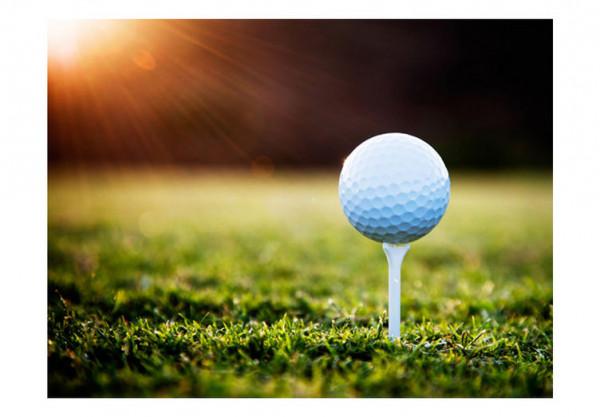 Fototapet - Golf game