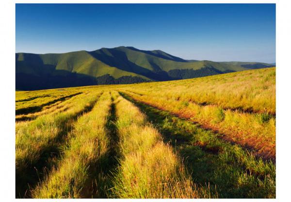 Fototapet - Mountain landscape