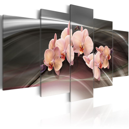 Tablou - A pink orchid on a dark background