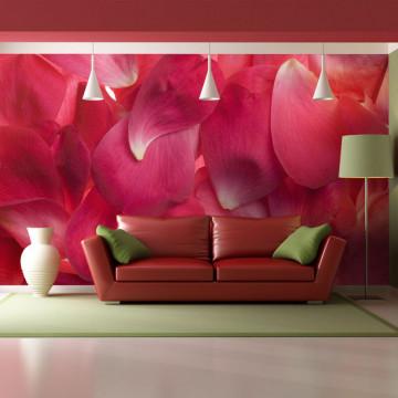 Fototapet - Pink rose petals