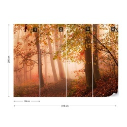 Calm Walk In Colors Photo Wallpaper Mural